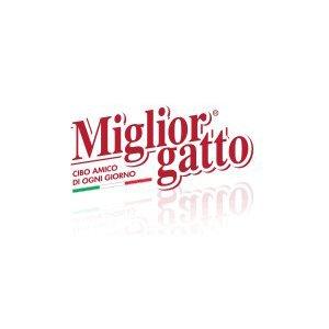MIGLIOR GATO